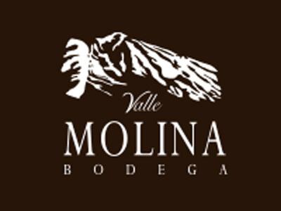 Bodega Valle Molina – Alejandro Gallo